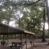 Triple Oaks Trail Homestead
