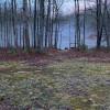 Pickleball Pond Oasis