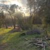 BR RANCH OAK TREE CAMP