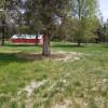 Wee Raptor Farm