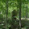 Parrott's Bay Camping