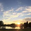 On Cedar Pond