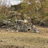 Old Rock Quarry at d'Lux Ranch