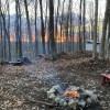 Camp Balmoral @ Burke
