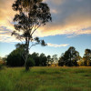 Gracemere Farmstead Campsites