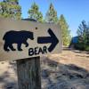 Ridge Camp-Bear Campsite