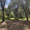 Loomerland Retreat RV Spot
