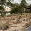 Murray River Retreat