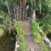 2 Story Solar Tree House