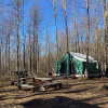 Canvas platform tent in the woods