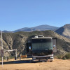 Lux RV Camping Trails/views/animals