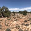 Starhome High Desert Camp