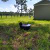 Moonlit Acre Mini Farm