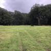 Cumbalum Farm