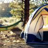 Juniper Rock Forest Camping