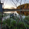 Farm, pond, pines, peace and quiet