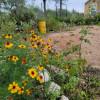 Orrasis Ranch RV site, SEEK