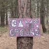 Pine forest tree house & Camp sites