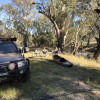 Caithness @ the Lachlan River
