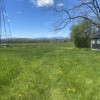 Ferry Road Sunset Farm