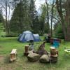 Big Tree Camping