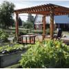 Rowan Tree Ranch