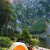 Pine Forest Hidden Gem