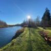 Wynoochee River Cabin: Saginaw