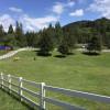 McColl Meadows Farm
