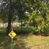 Quiet Farm Stop