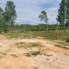 Crazy Acres Farm RV/Camper site