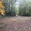 Fieldwoodsorriverbank