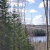 Private Bush Lot w/Lake Access