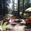 Camp Whidbey in the Big Woods
