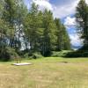 A Wild Suburban Meadow Camping Spot
