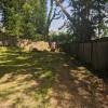Pixie Palace Backyard