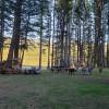 Lake front at Camp 12 Paws