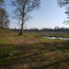 Springdale Farm Camping