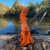 Beckford River 4WD Campsites