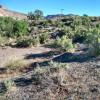 Palisade Plunge / Colorado River /
