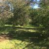 103 Acre Woods Marlborough Forest