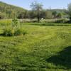 Flat yard beside hillside forest