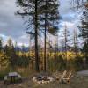Peaceful woods near Glacier NP