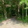 Camp Topisaw Duck Pond Overlook