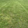 Fox Meadow RV Park