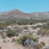 Hip High Desert Peace Camp