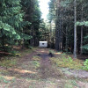 Platform in the Pines on 75 Acres