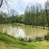 Variety- pond, field, shaded