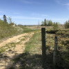 Lake Winnipeg beachfront meadow
