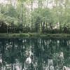 Private Pondside Primitive Campsite